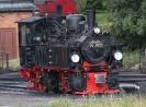 99 5901 am 13.8.2013 im Bw Wernigerode.